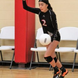 10 Volleyball Players on Preseason List