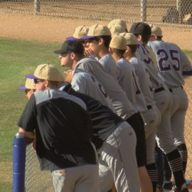 Baseball State Championships: 4 Athletes Looking for a Ring